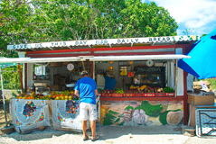 Local Caribbean Market. Man shopping at local roadside produce market on the island of St. Thomas, US Virgin Islands Royalty Free Stock Photography
