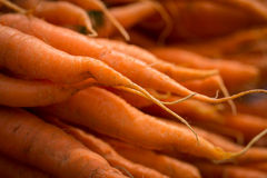 Local carrots at a Farmers Market Royalty Free Stock Images