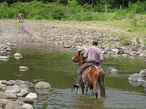 Local cowboy rides a horse through river, Nicaragua royalty free stock photography