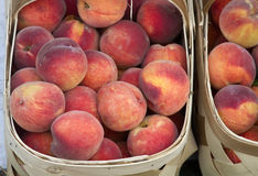 Local Crop of Peaches Royalty Free Stock Image