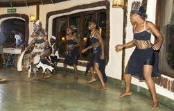 Local dance exhibitors in Tanzania, an authentic setting. Where life is wonderful Royalty Free Stock Image
