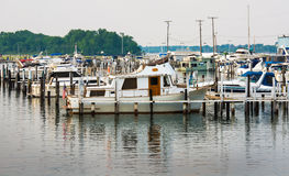 Local Detroit Marina Stock Images