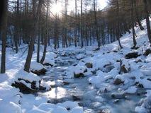 Local do lago dos allos, france Fotografia de Stock Royalty Free