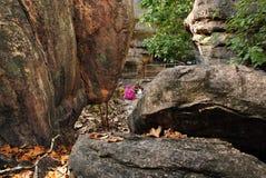 Local do património mundial de Bhimbetka-. Imagens de Stock