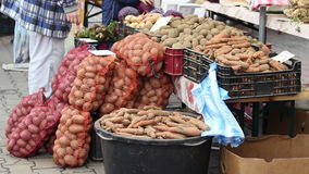 Local Farmer Vegetables. Organic agriculture products like potatoes, carrots and others for selling at a n organic products local market day stock video