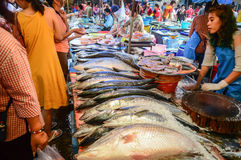 Local fish market in Asia. Sellers and buyers at local fish market in Asia Stock Photo