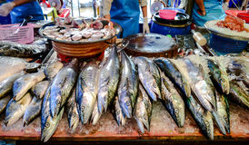 Local fish market. Local fish seafood market in Asia Stock Photography