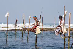 Local fishermen are fishing in unique style in South Sri Lanka Royalty Free Stock Photo