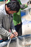 Local fishermen are removing fishes from their fishing nets in the Lagi beach Royalty Free Stock Image