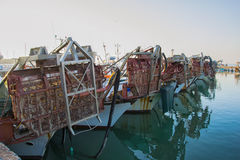 Local fishing boat, a catch of shellfish, especially oysters and clams Stock Photography
