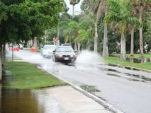 Local flooding hurricane debby. Hurricane Debby is a rainmaker for most of Florida causing local flooding.  These scenes were taken in Punta Gorda Florida on the Royalty Free Stock Photos