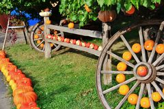 Local fruit shop, dealer in Princeton, British Columbia. Nice decoration with pumpkin, groud, fruits on Vintage tractor Stock Photo
