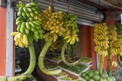 Fruit vendor in Sri Lanka. Local fruit shop in Sri Lanka Royalty Free Stock Photos