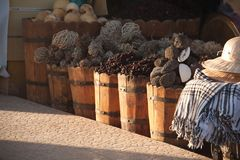 Local herbs at local market in dahab, red sea region, sinai, egy Royalty Free Stock Photography