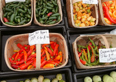Local Hot Peppers Royalty Free Stock Images