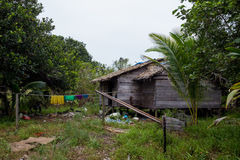 Local hut in jungles indonasia kalimantan Royalty Free Stock Images