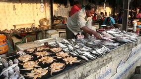 Local Indian men preparing fish for sale at the street market. stock footage