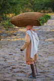 Local man carrying bag with grass on his head near Galta Temple Royalty Free Stock Image