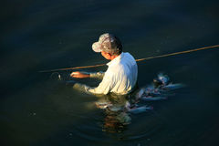 Local man fishing with a spear, Amarapura, Myanmar Royalty Free Stock Photos