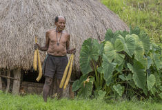 Local man with kotekas. Baliem Valley, West Papua, Indonesia, February 12th, 2016: Local man with four kotekas outside his house stock image