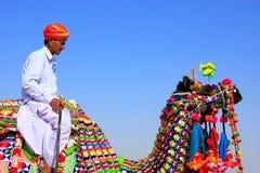 Local man riding a camel at Desert Festival, Jaisalmer, India Stock Images