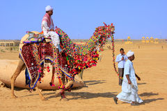 Local man riding a camel at Desert Festival, Jaisalmer, India Stock Photography