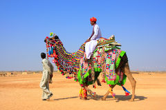 Local man riding a camel at Desert Festival, Jaisalmer, India Stock Photos