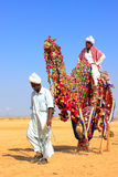 Local man riding a camel at Desert Festival, Jaisalmer, India Royalty Free Stock Photos