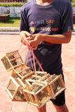 Local man selling birds near Pha That Luang Stock Photography
