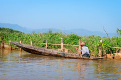 Local man in a traditional canoe rows past floating gardens on I Stock Photo