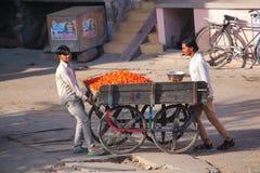 Local men pushing cart with tomatoes in Jaipur, Rajasthan, India Royalty Free Stock Photo
