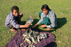 Local men showing catch, Amarapura, Myanmar Royalty Free Stock Photos