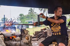 A local native indigenous Polynesian man roasts a pork barbecue an open fire made of coconut shells on a grill, Tonga. stock image