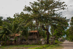 Local old wooden house and huge green trees. Philippines, island Negros. Stock Photo