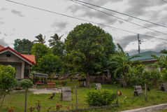 Local old wooden house and huge green trees. Philippines, island Negros. Stock Photography