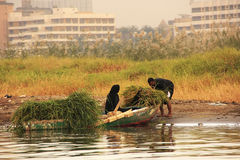 Local people getting into boat on the Nile river, Luxor Royalty Free Stock Photo