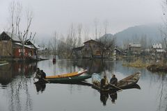 Activity of local people in Dal lake in Kashmir India Royalty Free Stock Images