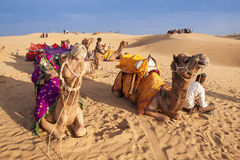 Local people and their camel rest on Thar desert Stock Photos