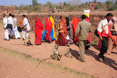 Local people walking around Ranthambore Fort amongst gray langur Royalty Free Stock Photography