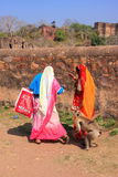 Local people walking around Ranthambore Fort amongst gray langur Royalty Free Stock Photos