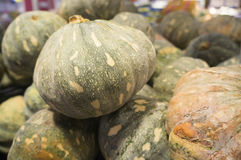 Local Pumpkin at the Market Stock Images