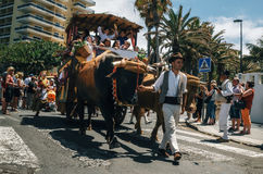 Local residents of Tenerife celebrate the Day of the Canary Islands. Puerto de la Cruz, Tenerife, Canary Islands, Spain - May 30, 2017: Decorated bull drawn stock photos