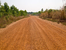 Local road at agricaltural area Stock Images