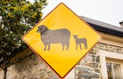 New Zealand road sign warning sheep and lamb crossing in rural farming area in Queenstown, New Zealand. A local road sign warning motorists of Sheep on the road royalty free stock photo