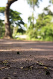 The local road way Royalty Free Stock Images