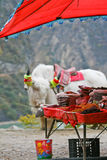 Local shop with white yak. Local shop with white wak on the way to the mountain Royalty Free Stock Photo