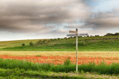 Local signpost in a field of red poppies Royalty Free Stock Photography