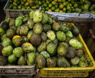 Local sliced manggo in sell store photo taken in bogor jakarta indonesia Stock Photos