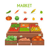 Local stall market. Selling vegetables. Flat vector illustration Stock Images
