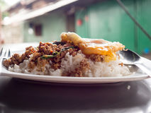 Local Thai rice topped with stir-fried pork basil and fried egg. royalty free stock photos